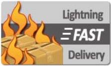 Lightning Fast Delivery